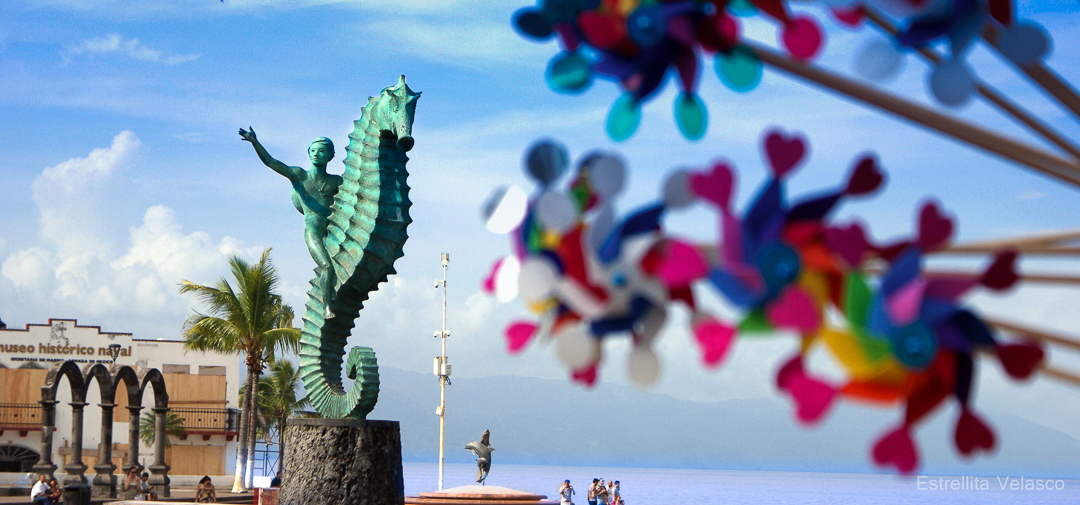 Get to know Puerto Vallarta from knowledgeable locals who love PV