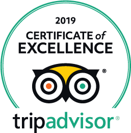 2019_certificate of excellence for Food and Photo tours in Puerto Vallarta